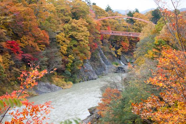 夕張の紅葉(滝の上公園)Vol.2